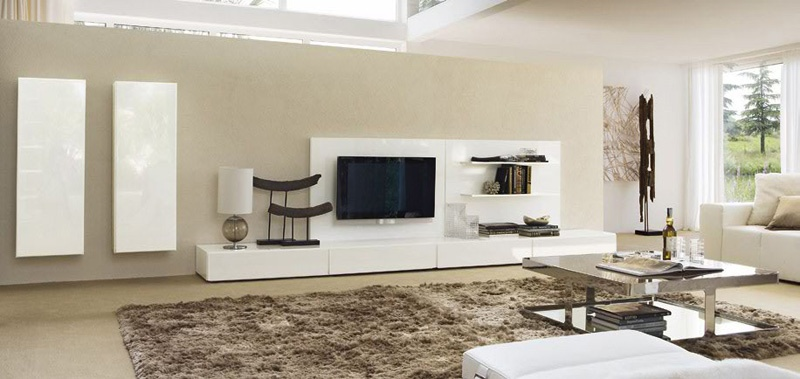 Ideas For Modern Living Room Storage Organization_image