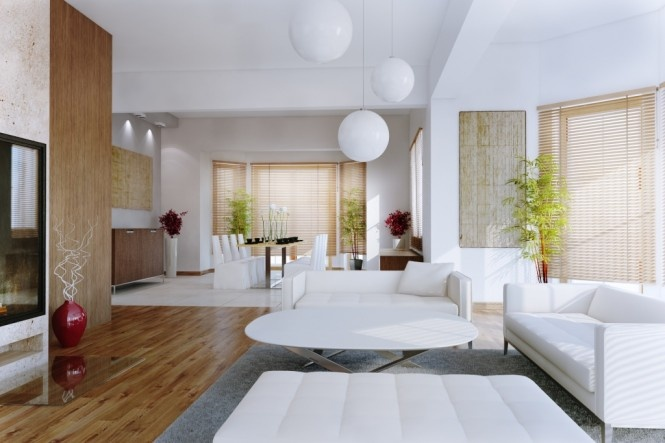 Classy Living Rooms_image