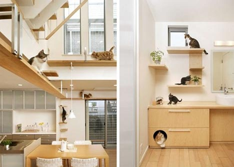 Pet Purrrfect: The Ultimate Cat-Friendly Interior Design_image