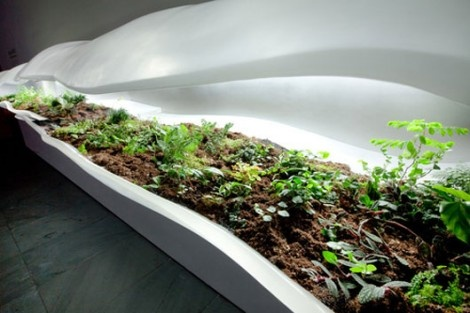 Modern Indoor Planter by Paula Haynes Brings the Outside In_image