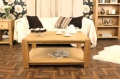 Severn Large Coffee Table_image1
