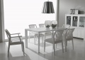 Neve Dining Chair _image2